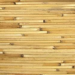 Caramel Bamboo - WND262