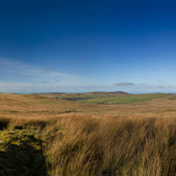 Panoramic view of a landscape, Mynydd Preseli National Park, Pembrokeshire, South Wales, Wales