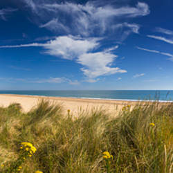 Marram Grass, dunes and beach, Winterton-on-Sea, Norfolk, England