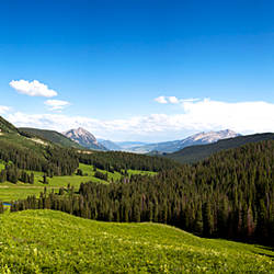 From Washington Gulch Road looking southeast towards, Crested Butte, Gunnison County, Colorado, USA