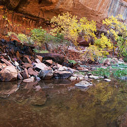 Reflecting pond in Zion National Park, Springdale, Utah, USA