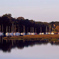 Boats at harbor, Golfe Du Morbihan, Vannes, Morbihan, Brittany, France