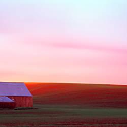 Barn in a field at sunset, Palouse, Whitman County, Washington State, USA