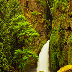 Waterfall in a forest, Columbia River Gorge, Oregon, USA