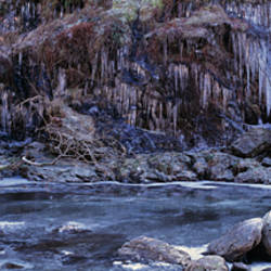 Icicles and frozen river, River Falloch, Loch Lomond, Highlands, Scotland