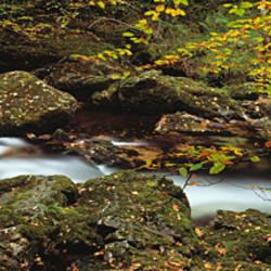 River Erme near Ivybridge in the autumn, Dartmoor, Devon, England