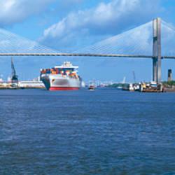 Bridge across a river, Talmadge Bridge, Savannah River, Savannah, Chatham County, Georgia, USA