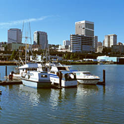 Boats at a harbor with city skyline in the background, Tacoma, Pierce County, Washington State, USA