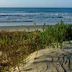 Panoramic view of a beach, Kiawah Island Golf Resort, Kiawah Island, Charleston County, South Carolina, USA