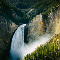 High angle view of a waterfall in a forest, Lower Falls, Yellowstone River, Yellowstone National Park, Wyoming, USA