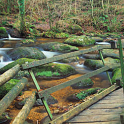 Leap of Faith broken bridge, Becky Brook, Becky Falls, Bovey Tracey, Dartmoor National Park, Devon, England