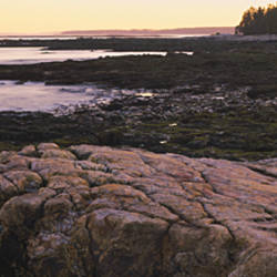 Rock formations at the coast, Acadia National Park, Maine, USA