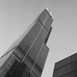 Low angle view of buildings, Sears Tower, Chicago, Illinois, USA
