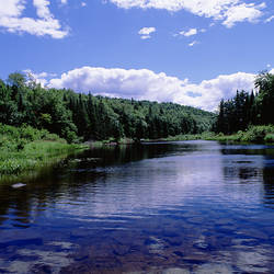 USA, New York, Adirondack State Park, Adirondack Mountains, Raquette river near Long Lake