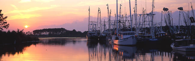 Shrimp boats at a harbor, Bayou La Batre, Mobile County, Alabama, USA