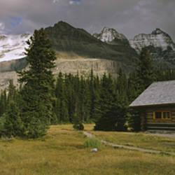 Log Cabins On A Mountainside, Yoho National Park, British Columbia, Canada