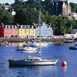 Boats docked at a harbor, Tobermory, Isle of Mull, Scotland