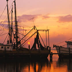 Fishing boats in a river, Amelia River, Fernandina Beach, Nassau County, Florida, USA