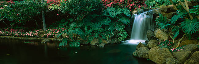Waterfall in a forest, Lanai, Maui, Hawaii, USA