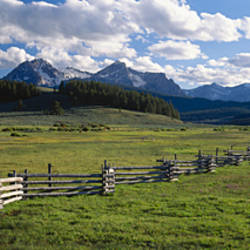 Field in front of mountains, Sawtooth Mountains, Idaho, USA
