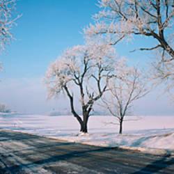 Road passing through winter fields, Illinois, USA