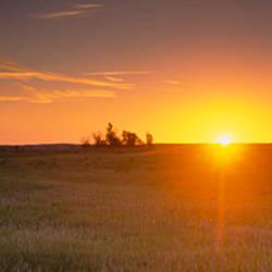 Sunrise over a grassland, North Dakota, USA