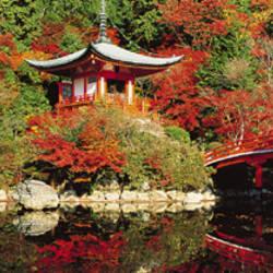 Daigo Temple, Kyoto, Japan