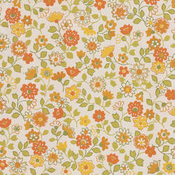 Dreaming of Spring, Apricot