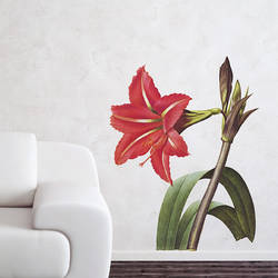 Amaryllis - Vintage Wall Decal