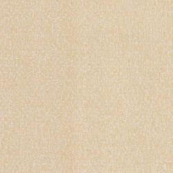 Birch, Canvas