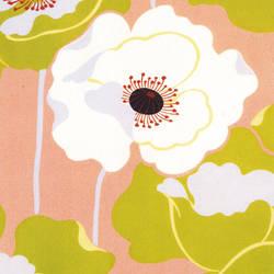 Poppies Trompe L'oeil