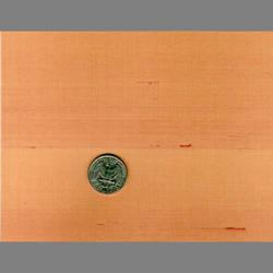Apricot Japanese natural fiber silk wallcovering: JS41