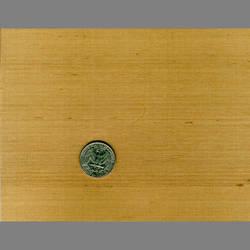 Bamboo Japanese natural fiber silk wallpaper: JS34