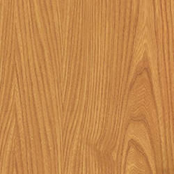 Japanese Elm Wood Grain Contact Paper