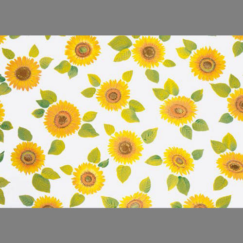 Sunflower Contact Paper