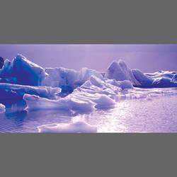 Iceberg Mural