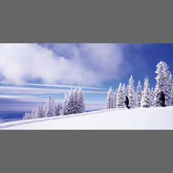 Snow Skiing Mural