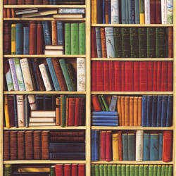 Bibliotheque Trompe l'oeil