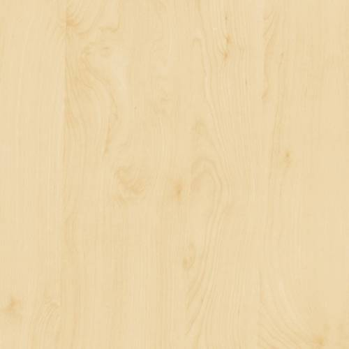 Birch Wood Contact Paper Designyourwall