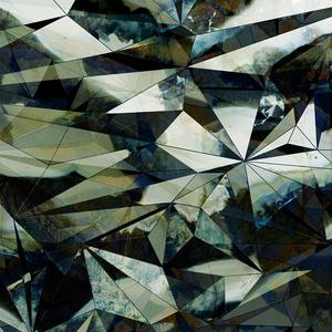 Fragment - Moss AD313-2
